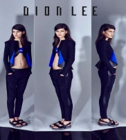 Dion Lee Ii Collection  2014